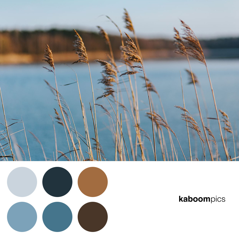 Kaboompics - Free Stock Photos & Color Schemes