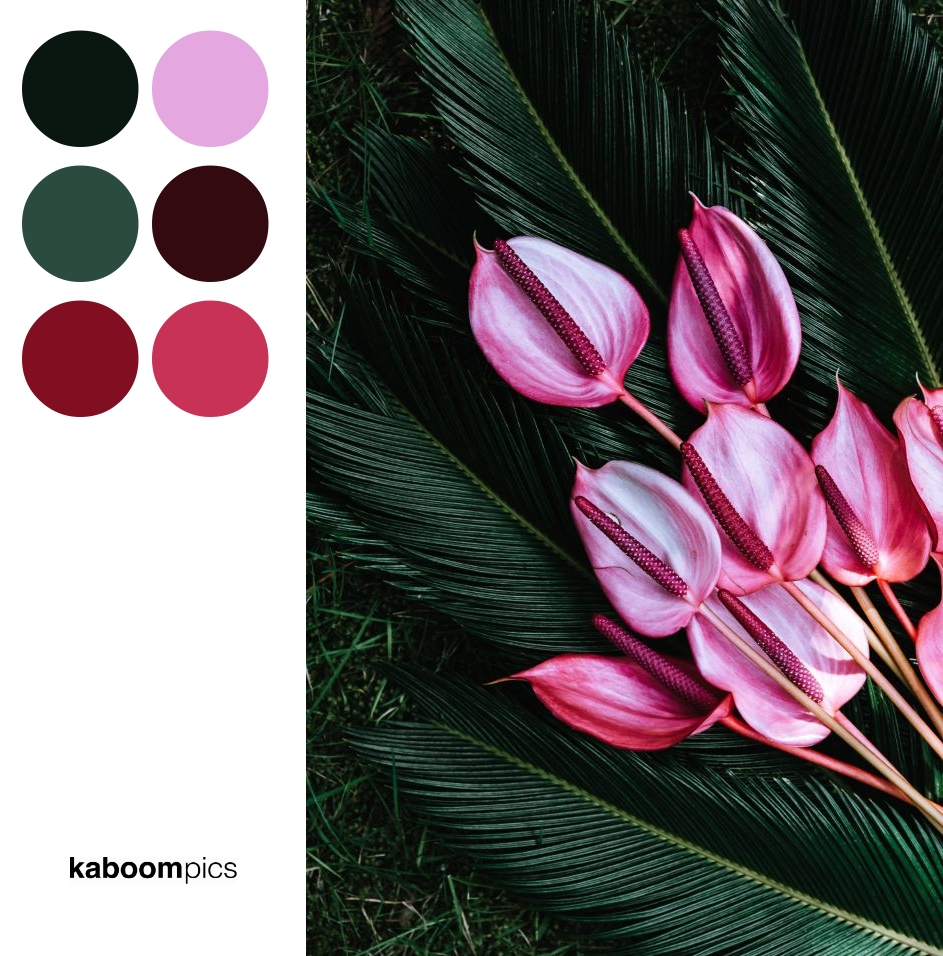 Color Scheme Inspiration - COLORFUL EXOTIC FLOWERS AND GREENERY