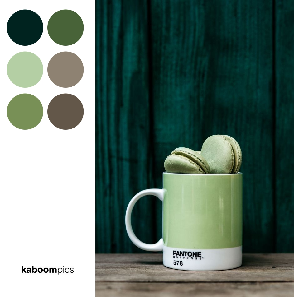Color Scheme Inspiration - COLORFUL MACAROONS IN PANTONE MUG